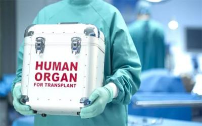 Περίπου 60 νεφροπαθείς στη Μαγνησία περιμένουν μόσχευμα