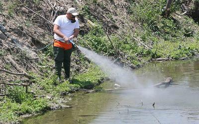 Ξεκινάει το πρόγραμμα κουνοποκτονίας σε Αλμυρό, Βόλο και Ν. Πήλιο