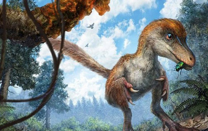 HΠΑ: Βρέθηκε ουρά δεινοσαύρου 99 εκατ. ετών διατηρημένη σε κεχριμπάρι