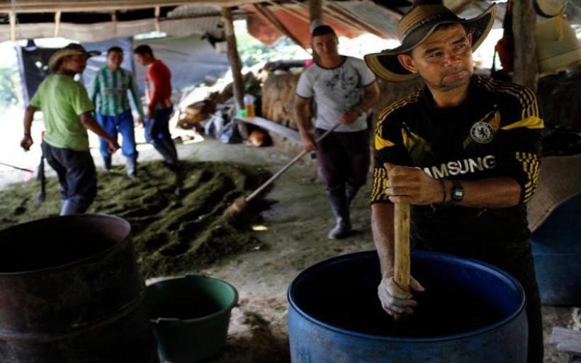 Νέο παγκόσμιο ρεκόρ παραγωγής κοκαΐνης το 2017
