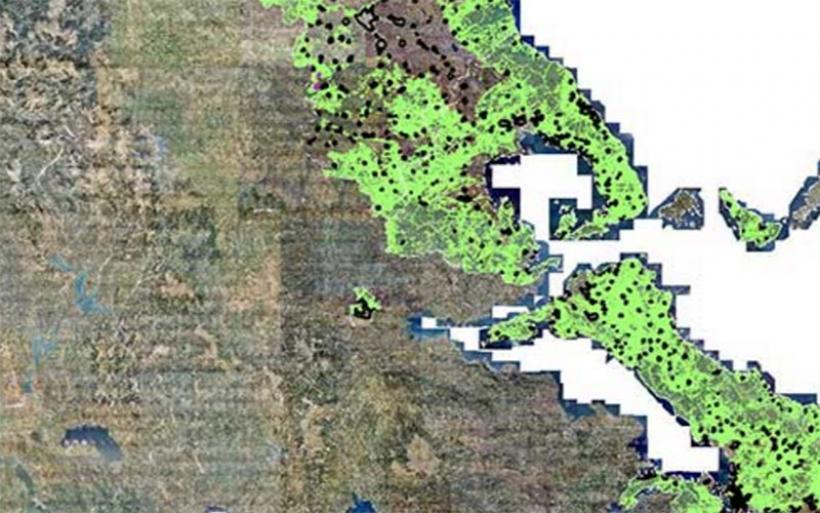Αλμυρός: Αρκετά τα αιτήματα για τους δασικούς χάρτες