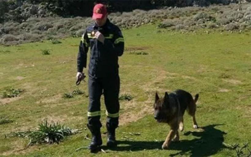 Νεκρός βρέθηκε 47χρονος βοσκός σε περιοχή του Αλμυρού
