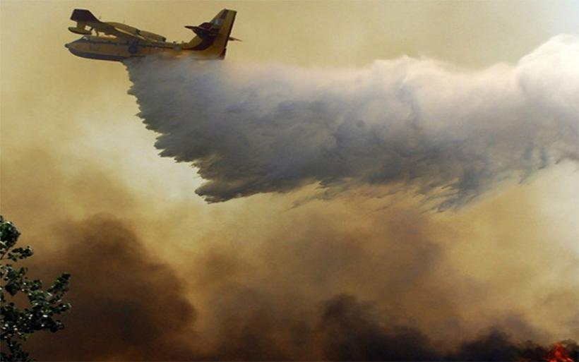 Φωτιά στο Δίλοφο Φαρσάλων σκέπασε με καπνό τον ουρανό του Αλμυρού