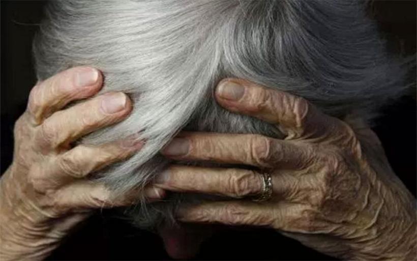 Στιγμές τρόμου έζησε ηλικιωμένη γυναίκα στο Πήλιο