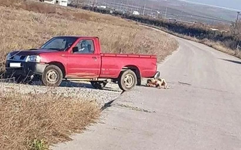 Φρίκη σε χωριό της Λάρισας: Έδεσε το σκύλο πίσω από το αγροτικό και τον έσερνε