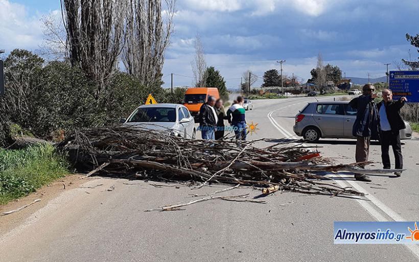 Ατύχημα με αυτοκίνητο μετά από πτώση δέντρου στον Αλμυρό (φωτο&βίντεο)