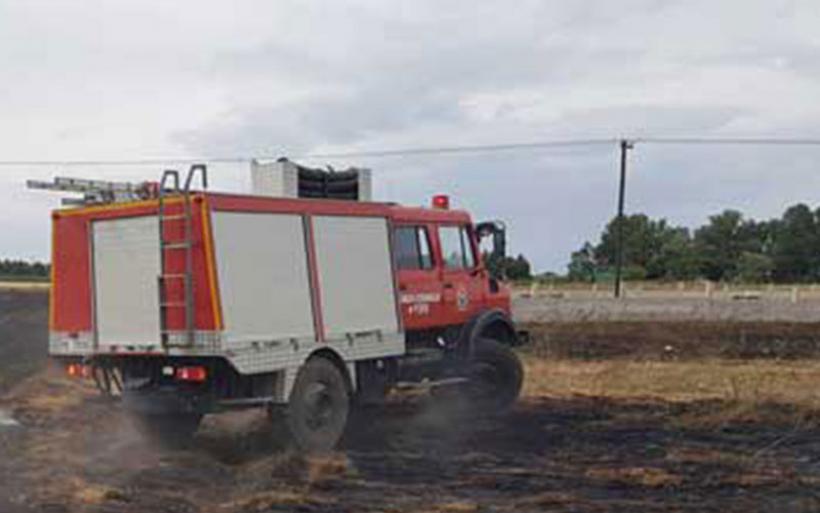 Φωτιά σε αγροτική έκταση κοντά στο δάσος Κουρί στον Αλμυρό
