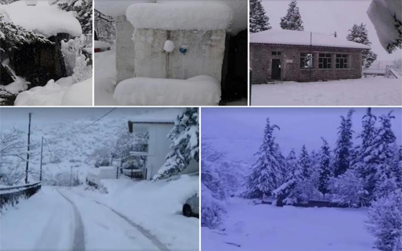 Πανέμορφο λευκό τοπίο στους Κωφούς Αλμυρού (φωτογραφίες)