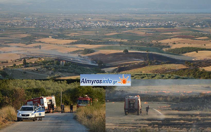 Φωτιά σε έκταση 300 στρεμμάτων στο Μπακλαλί Αλμυρού (φωτο)