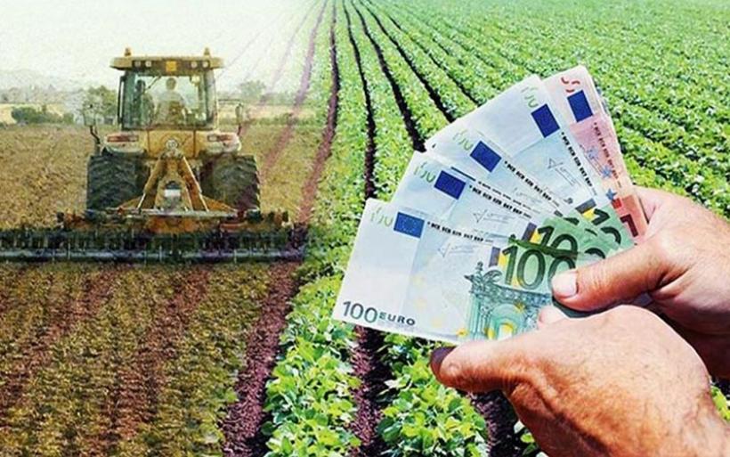 ΟΠΕΚΕΠΕ: Τρία και πλέον εκατ. ευρώ για δασώσεις και νέους αγρότες