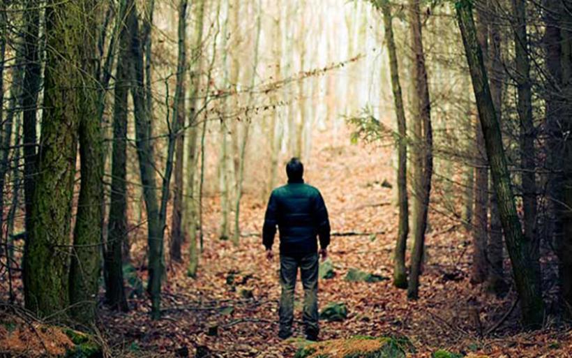 428 προσλήψεις στη Θεσσαλία για την προστασία των δασών