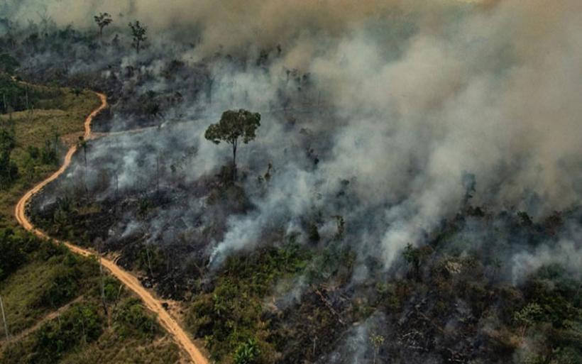 Βραζιλία: Συνελήφθησαν 63 άτομα στις επιχειρήσεις καταπολέμησης των πυρκαγιών στον Αμαζόνιο