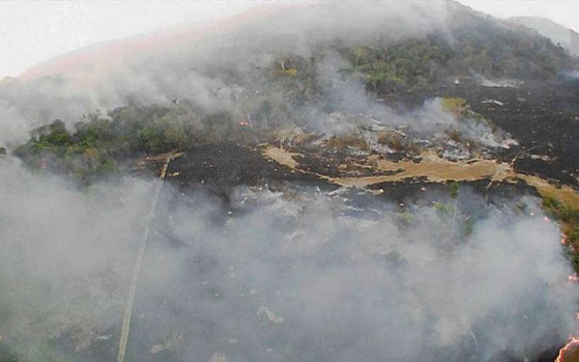 Αμαζόνιος SOS: Ο πνεύμονας του πλανήτη φλέγεται - Παγκόσμια ανησυχία