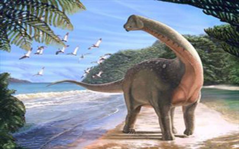 Απολίθωμα δεινοσαύρου με μήκος λεωφορείου