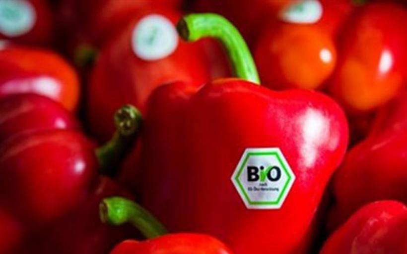 Στα ύψη η ζήτηση βιολογικών προϊόντων στη Γερμανία