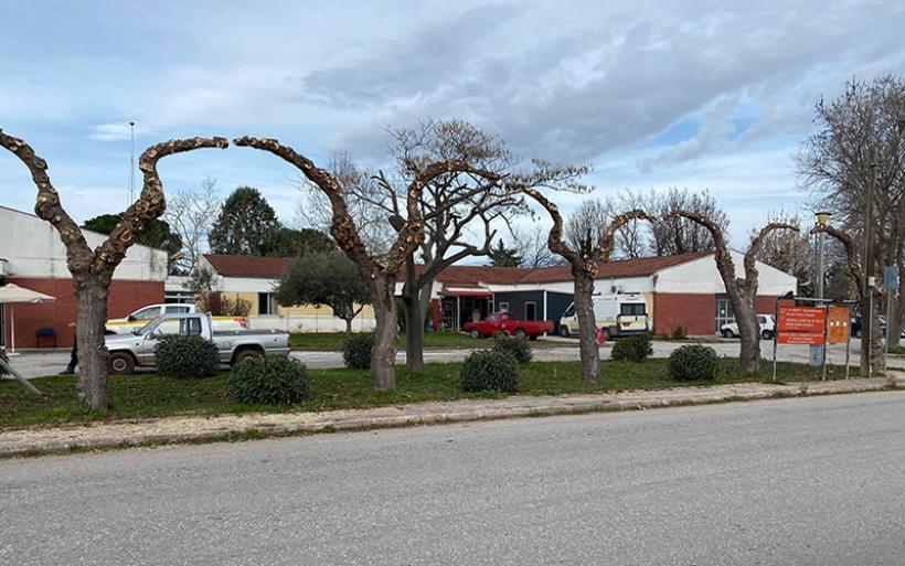 Δ. Αλμυρού: Εντατικοποίηση εργασιών κλαδέματος δέντρων, με σκοπό τον καλλωπισμό και τη συντήρηση τους