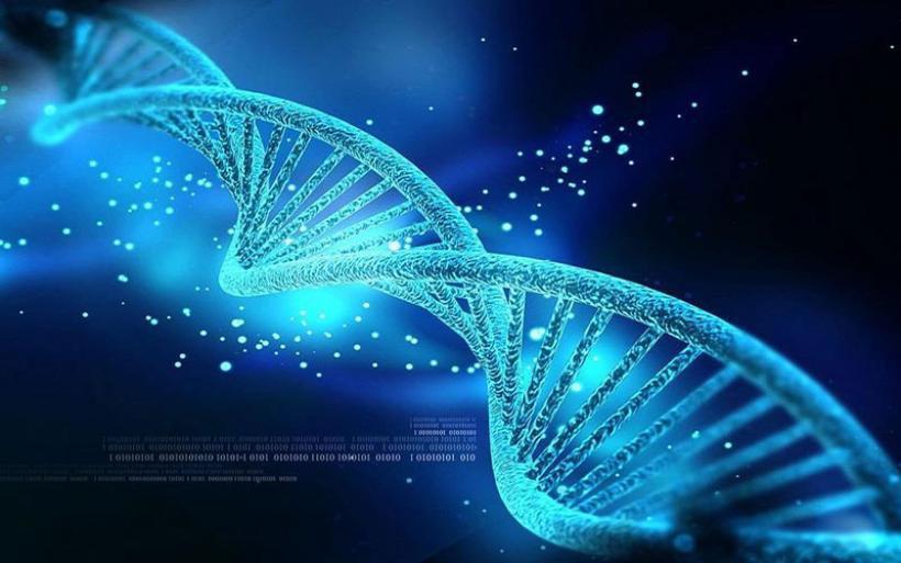 Ο πρώτος έμβιος μικροοργανισμός με DNA 100% ανασχεδιασμένο από ανθρώπους