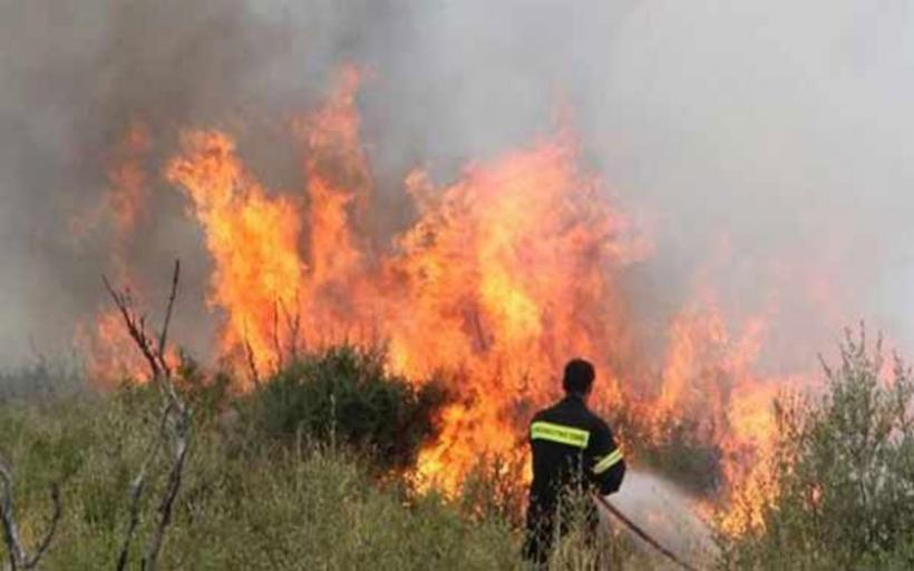 Περισσότερες από 50 πυρκαγιές το τελευταίο 24ωρο στη χώρα