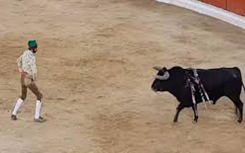 Ταυρομάχος προκάλεσε με γυμνά χέρια τον ταύρο και το πλήρωσε με τη ζωή του