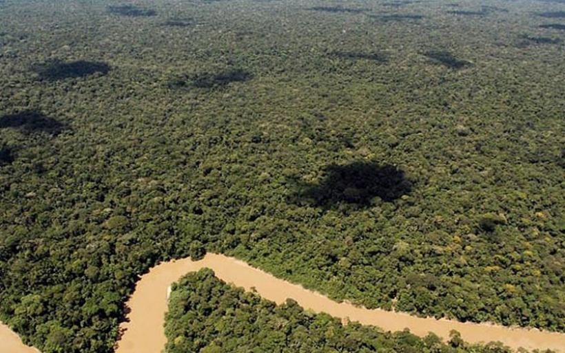 Μελέτη: Τα τροπικά δάση μπορεί να απελευθερώνουν άνθρακα με την υπερθέρμανση του πλανήτη
