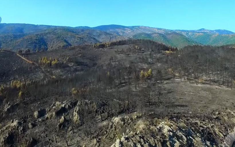 Εύβοια: Το αποτύπωμα μιας τεράστιας καταστροφής μέσα από την κάμερα drone