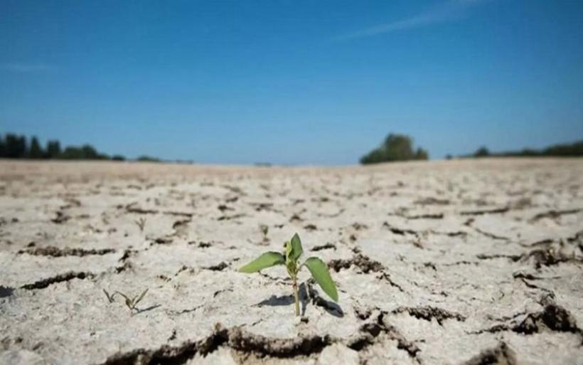 Οι ακραίες ξηρασίες θα διπλασιαστούν τα καλοκαίρια εξαιτίας της κλιματικής αλλαγής