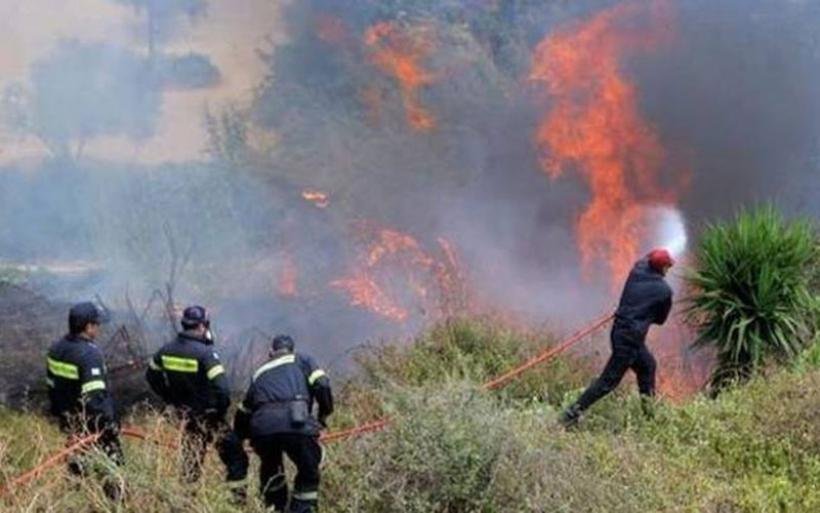 Απειλητική φωτιά στη Βρύναινα Αλμυρού