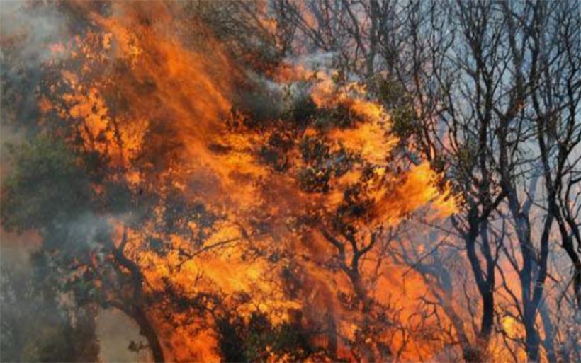 Φωτιές σε Ευξεινούπολη και Νέα Αγχίαλο