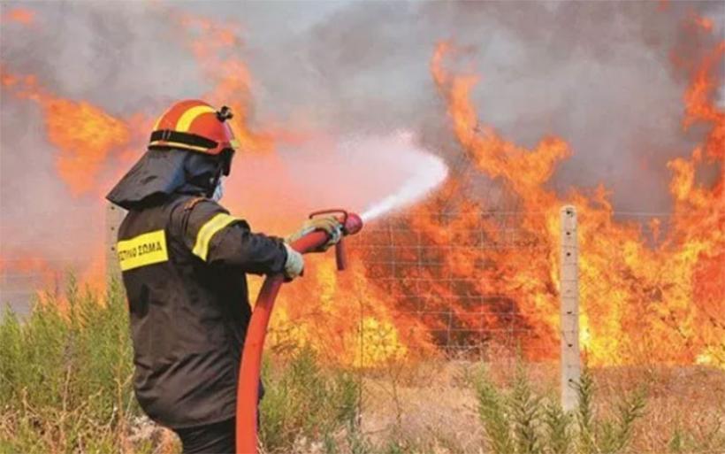 Δύο φωτιές στην επαρχία Αλμυρού έσβησε η Πυροσβεστική