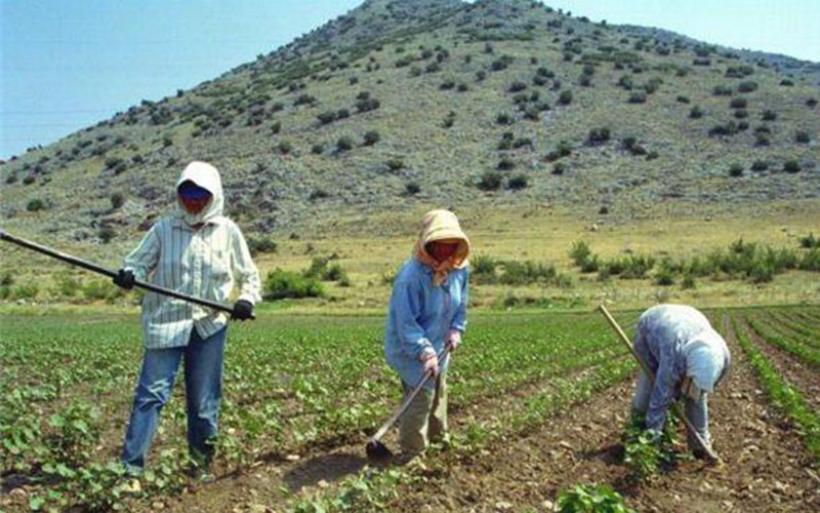 Δύο ελαφρύνσεις και πέντε αλλαγές για το φόρο αγροτών