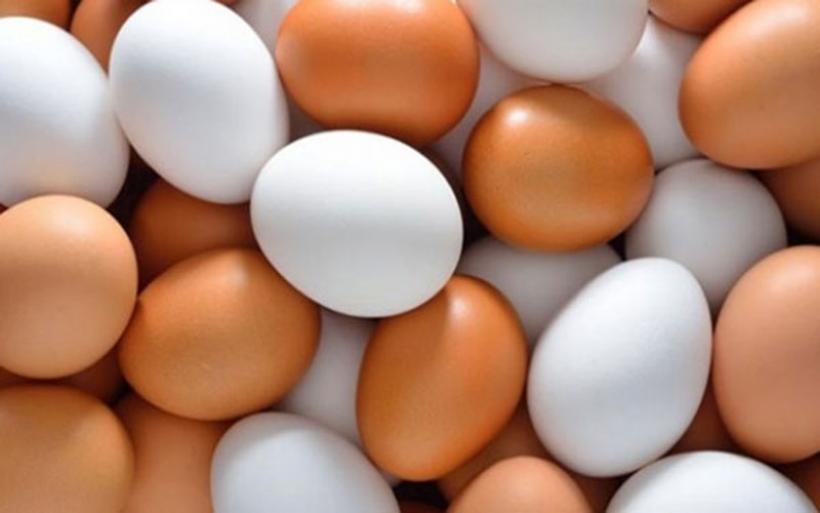 Προσοχή όταν αγοράζετε αυγά: Τι πρέπει να γνωρίζετε