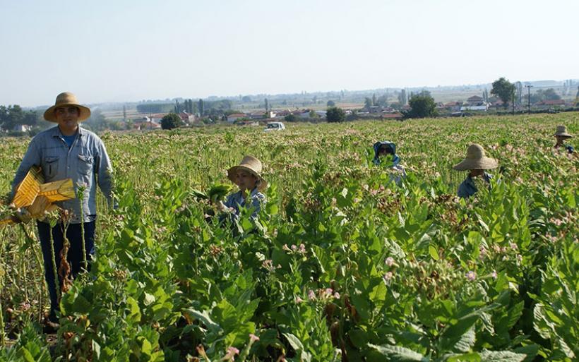 Μόνο με πλαστικό χρήμα χτίζεται το αφορολόγητο για τους αγρότες