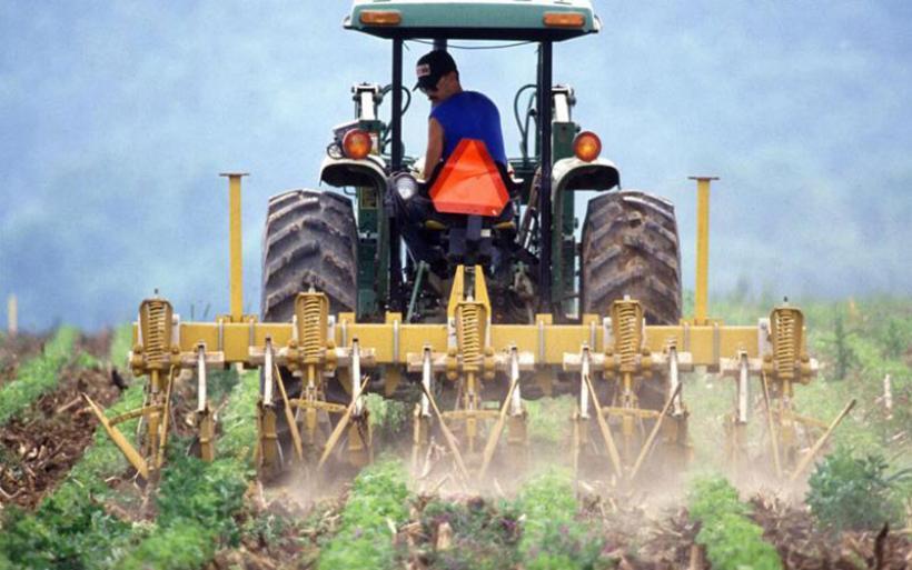 Αγροτικό Εισόδημα: Πότε υπάρχει κίνδυνος περικοπής της σύνταξης