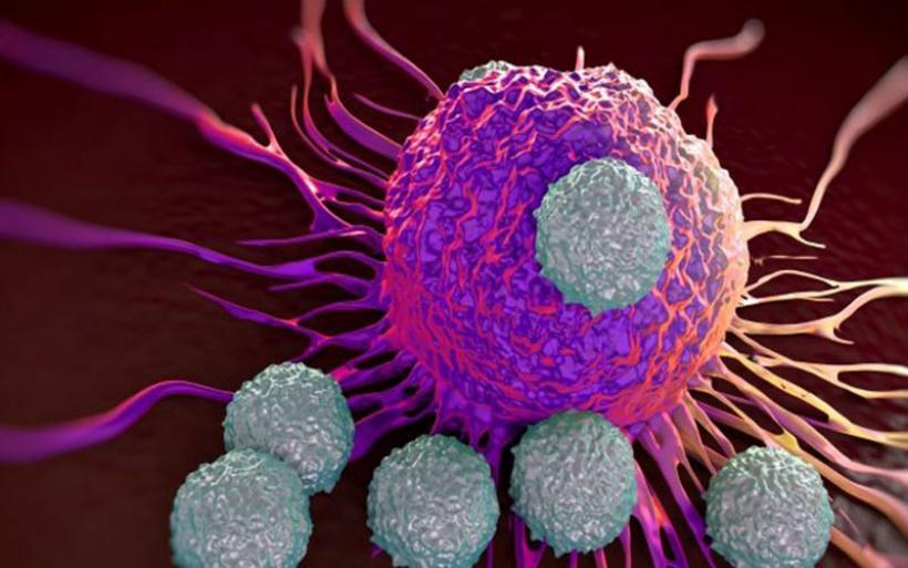 Το πρώτο πειραματικό «τηλεκατευθυνόμενο» σύστημα ανοσοθεραπείας του καρκίνου