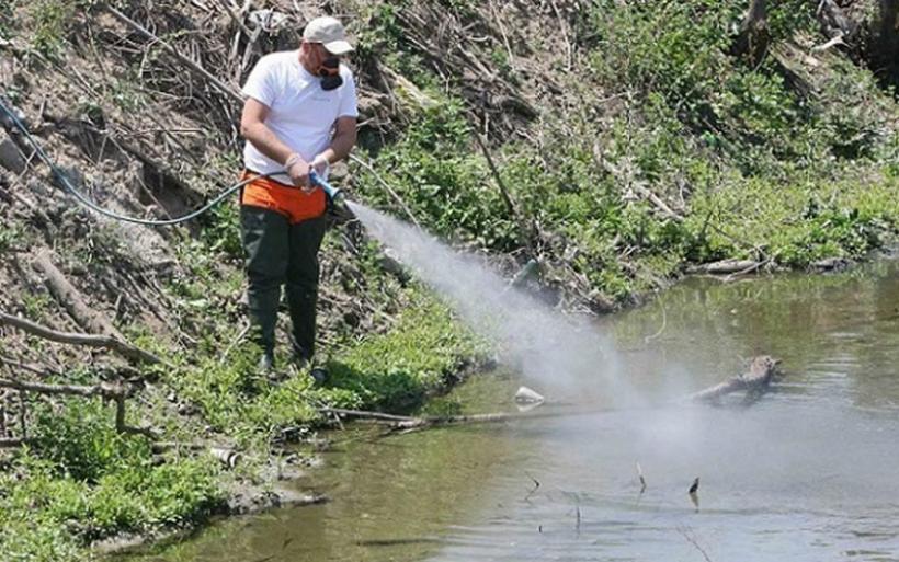 Το πρόγραμμα καταπολέμησης κουνουπιών σε Αλμυρό και Μαγνησία