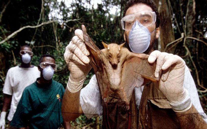 Πώς να σταματήσουμε την επόμενη πανδημία