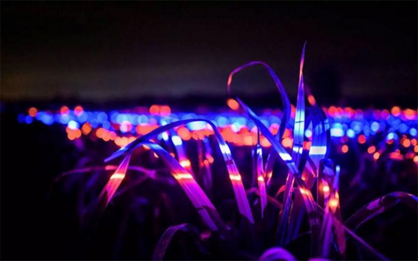Η φωτορύπανση αυξήθηκε έως και… 400% τα τελευταία 30 χρόνια! «Ένοχες» οι λάμπες LED