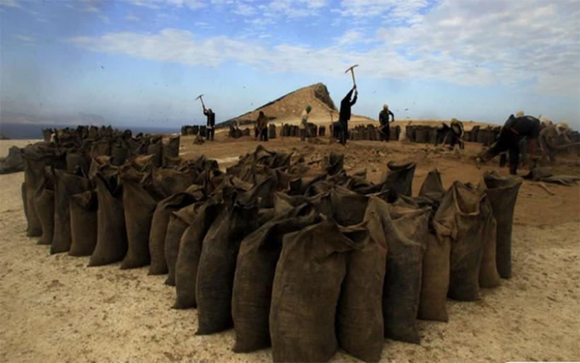 ΕΕ: Απετράπη η δυνατότητα χρήσης «πράσινης» σήμανσης σε λιπάσματα με χαμηλή περιεκτικότητα σε κάδμιο