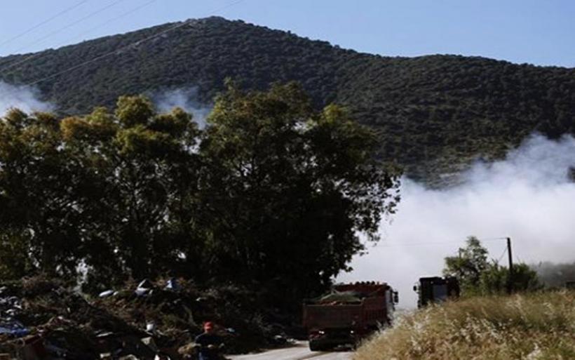 Σε εξέλιξη πυρκαγιά σε δασική έκταση στην περιοχή Μαυροβούνι στα Μέγαρα