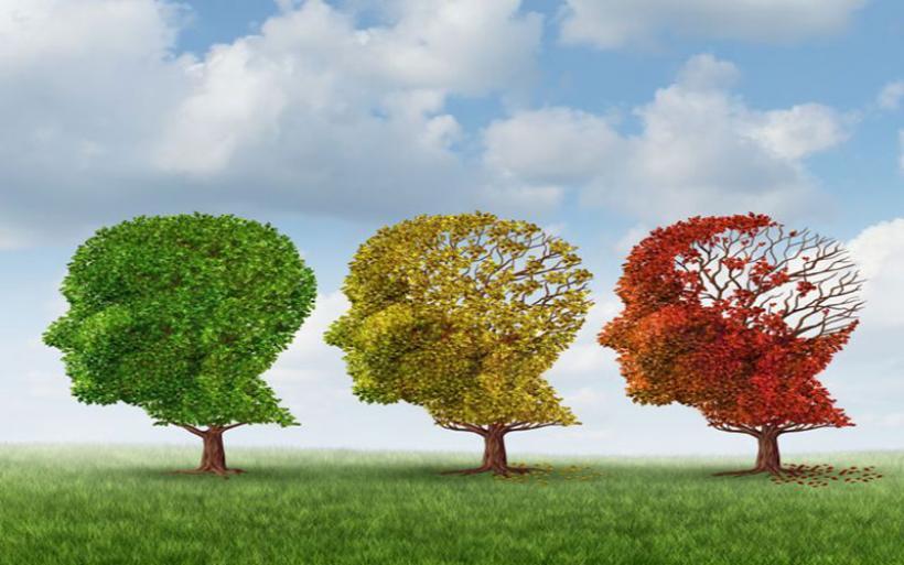 Σύστημα τεχνητής νοημοσύνης προβλέπει τη νόσο Αλτσχάιμερ