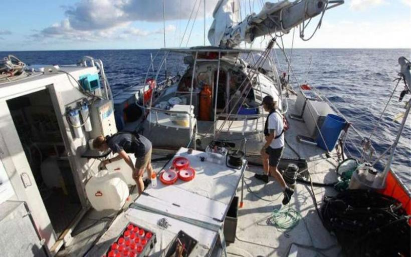 «Ταυτοποιήθηκαν» 200.000 ιοί στους ωκεανούς