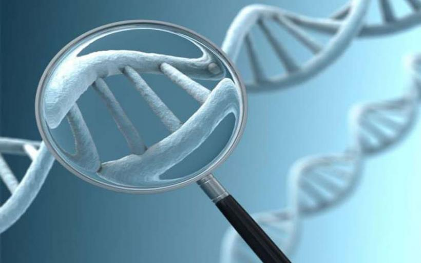 Ένα βήμα πιο κοντά σε γενετικό τεστ για τον καρκίνο των όρχεων