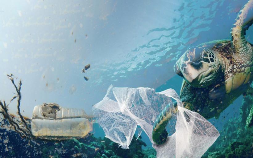 """Η Μεσόγειος """"πνίγεται"""" από τα πλαστικά"""