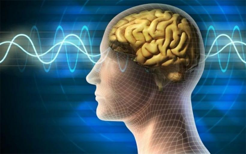 Πάρκινσον: Νέες ενδείξεις ότι η νόσος μπορεί να ξεκινήσει από το έντερο