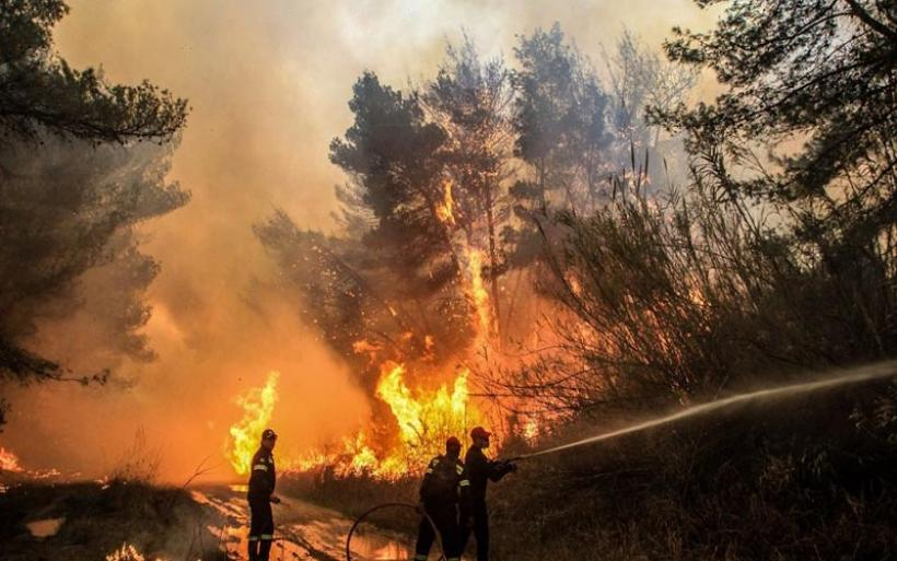 Μεσσηνία: Φωτιά στην Κλάκοβα Μεγαλόπολης - Επιχειρούν πέντε αεροσκάφη