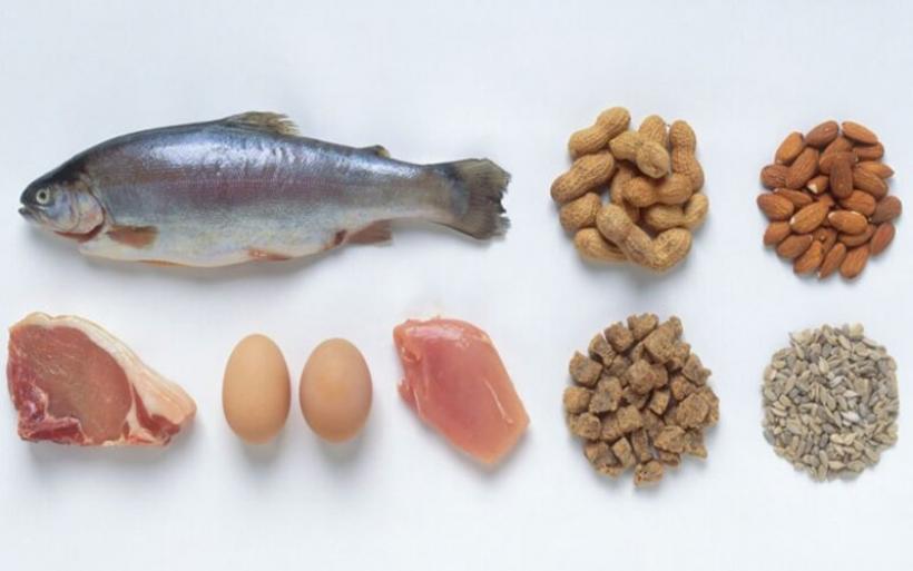 Γιατί οι δίαιτες με υψηλή περιεκτικότητα σε πρωτεΐνες έχουν μεταβολικό πλεονέκτημα
