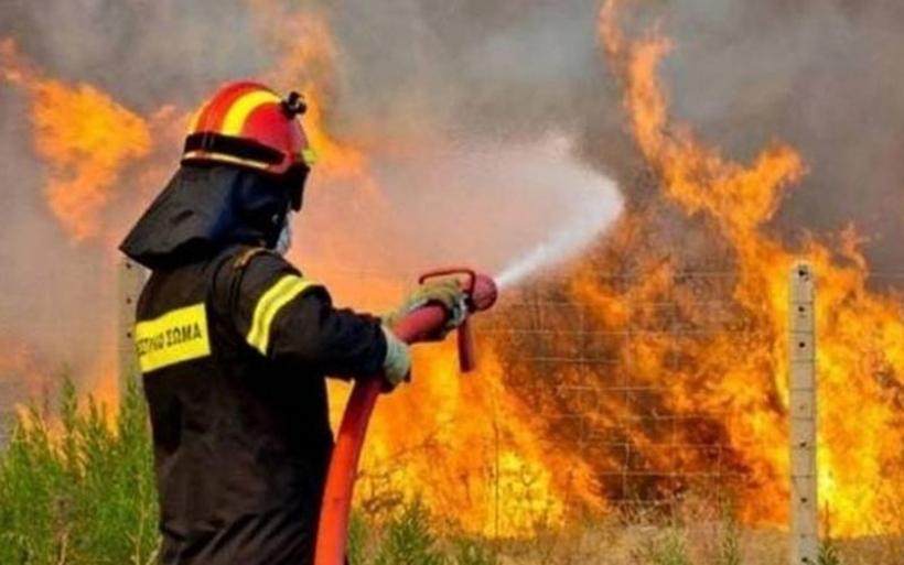 Πυρκαγιά σε αγροτική περιοχή στον Αλμυρό