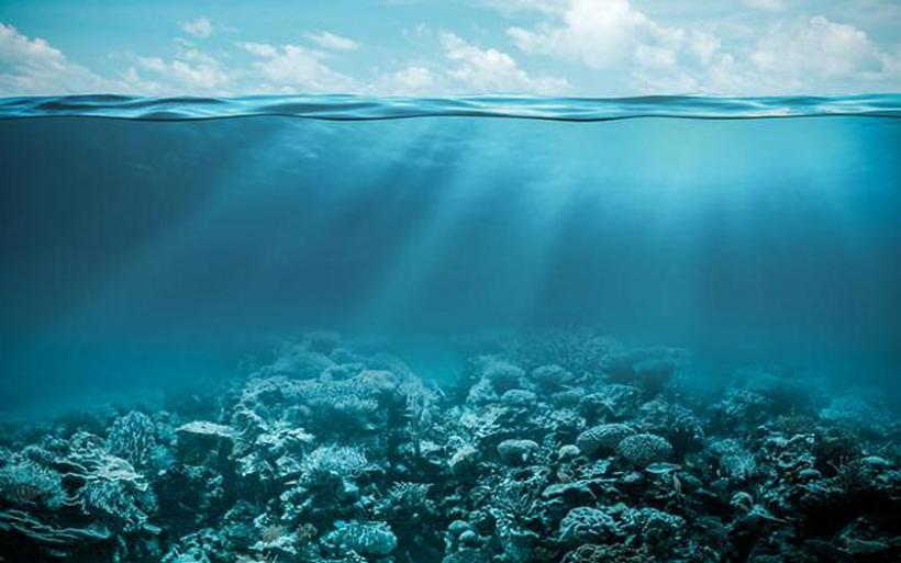 Εκθεση: Το οξυγόνο μειώνεται σε όλο και περισσότερες θαλάσσιες περιοχές – Οι ειδικοί εκπέμπουν SOS