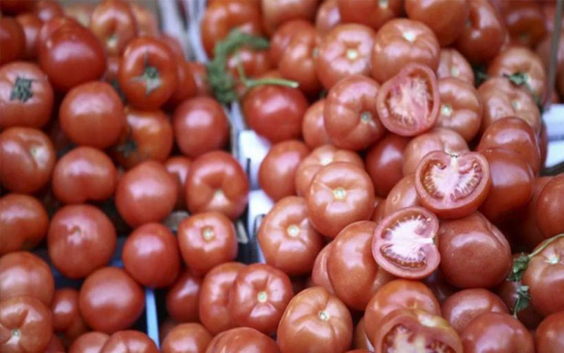 Κατασχέθηκαν ντομάτες Αλβανίας με υπολείμματα φυτοφαρμάκων