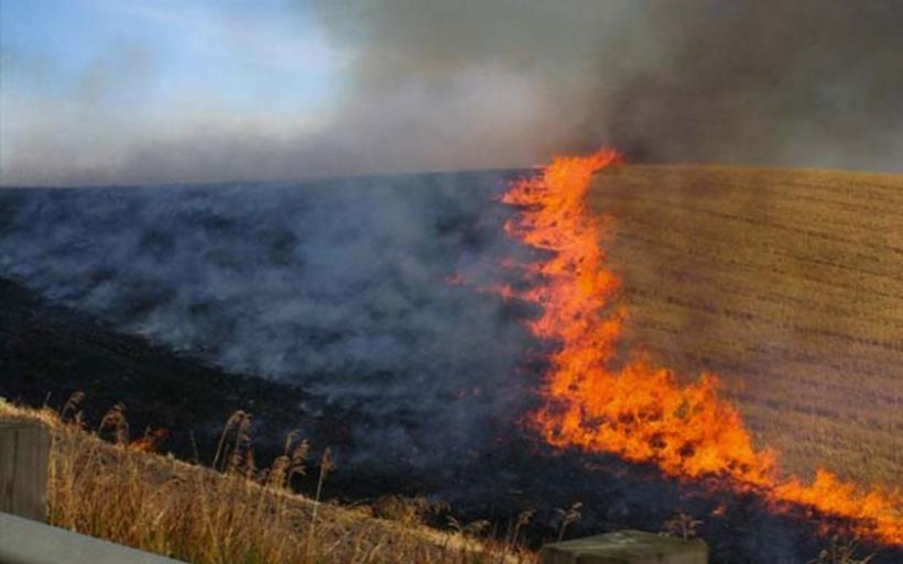Π.Ε. Μαγνησίας & Σποράδων: Σε πλήρη ετποιμότητα  λόγω υψηλού κινδύνου πυρκαγιάς